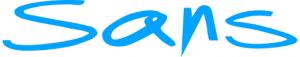 Sans online logo (5)